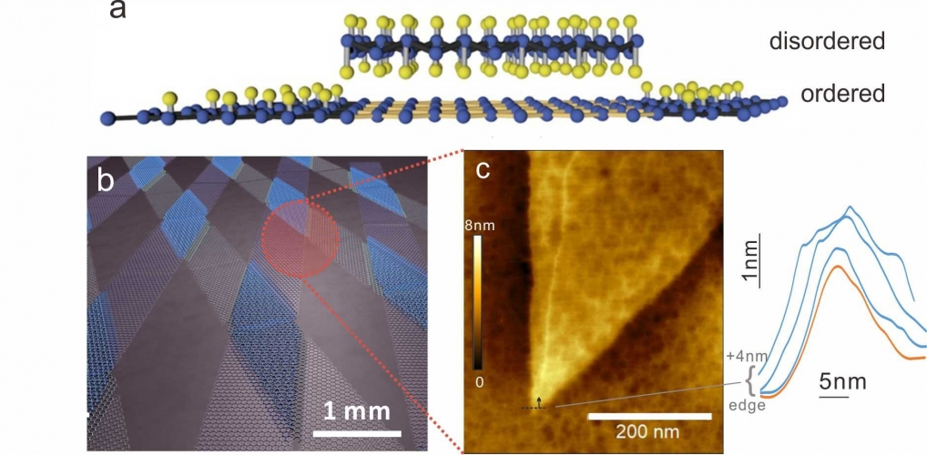 Representative picture of 2D Material Enabled Offset‐Patterning with Atomic Resolution