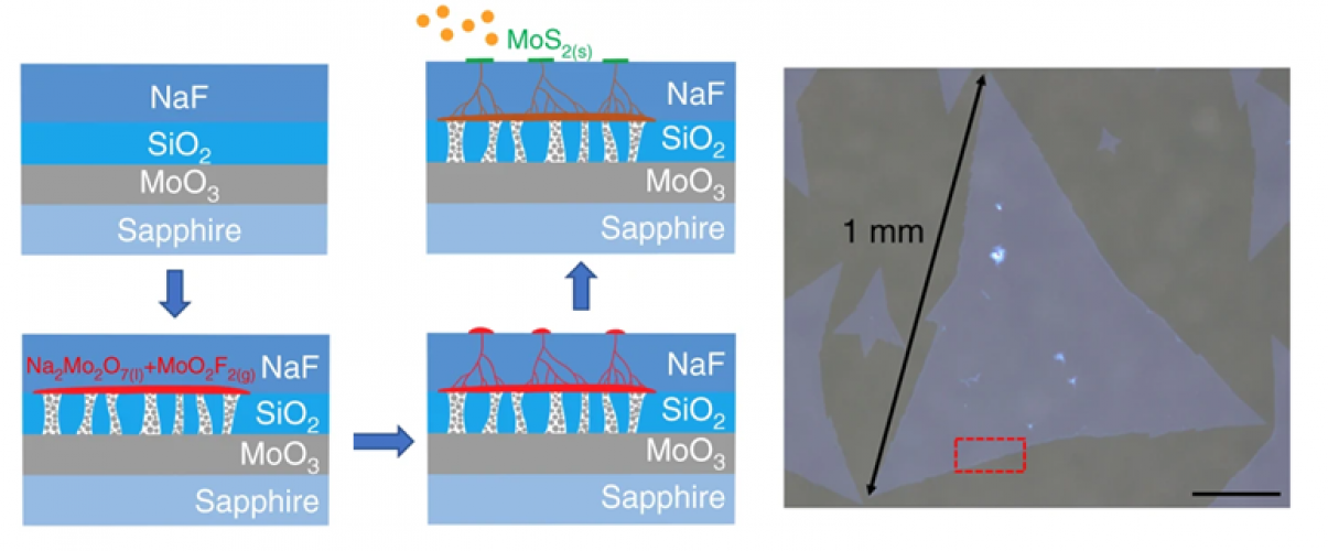 Representative picture of Self-capping vapor-liquid-solid (VLS) growth of MoS2